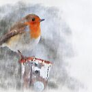 Robin Redbreast by Louise  Bishop