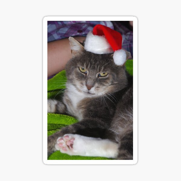 Santa Claws Sticker