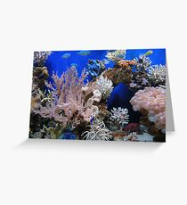 aquarium Greeting Card