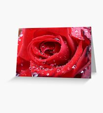 Rose with raindrops Greeting Card