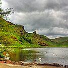 St Margaret's Loch View by Tom Gomez
