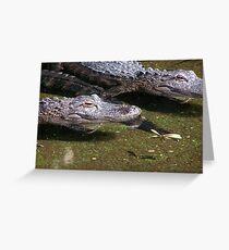 Alegator Greeting Card