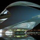 Palau De Les Arts - CAC - at night by Valfoto