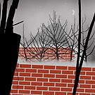 Haunted Garden Classic by Simo Sakari Aaltonen