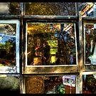 windows in mirrors by John Adulcikas