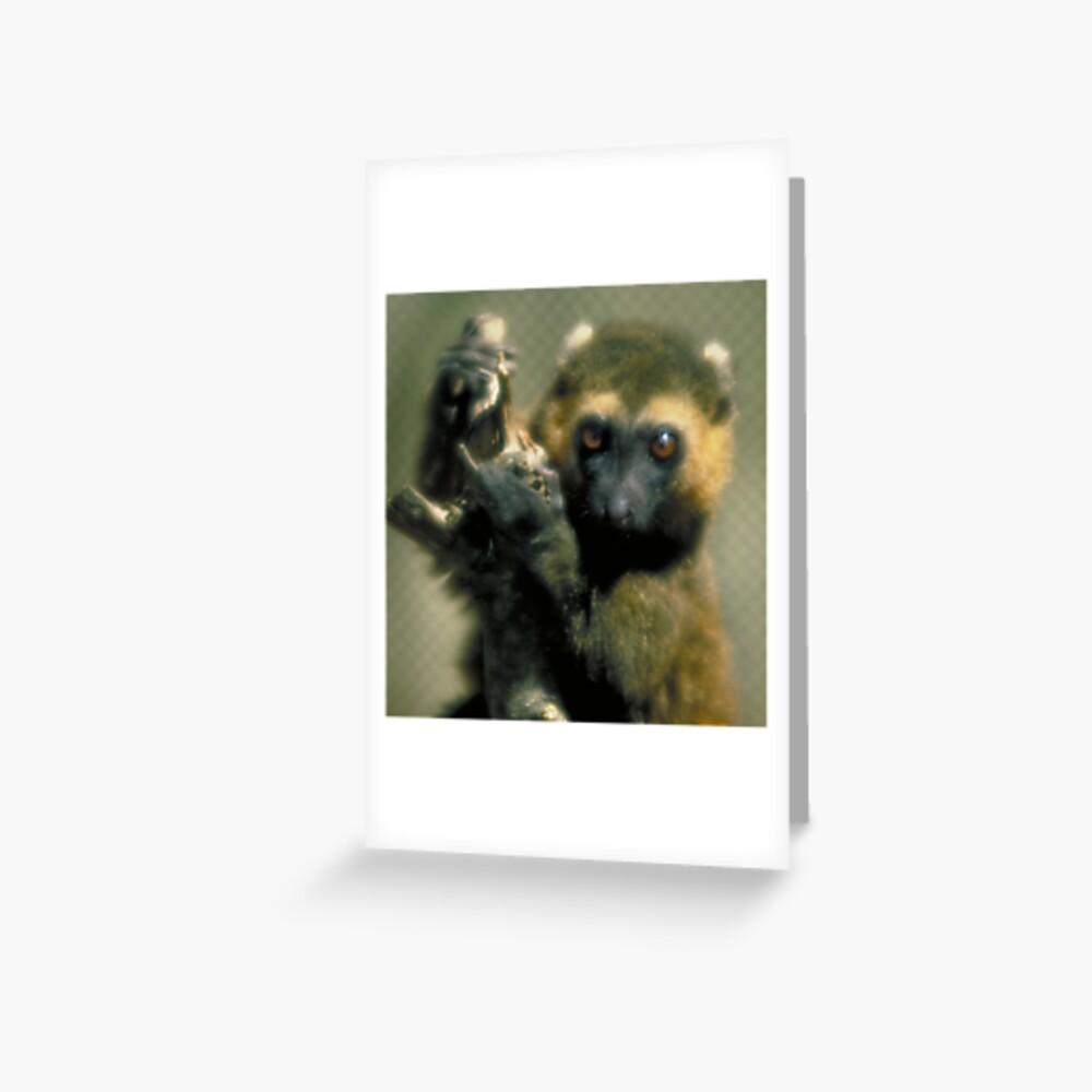 Lemur eyes Greeting Card