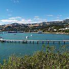 French Bay - Akaroa -New Zealand by redkitty