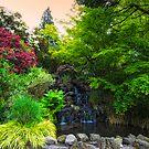 Crystal Rhododendron Gardens by Deri Dority