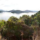 Marlborough Sounds - New Zealand by Tim Slade