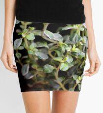 Thyme leaves Mini Skirt
