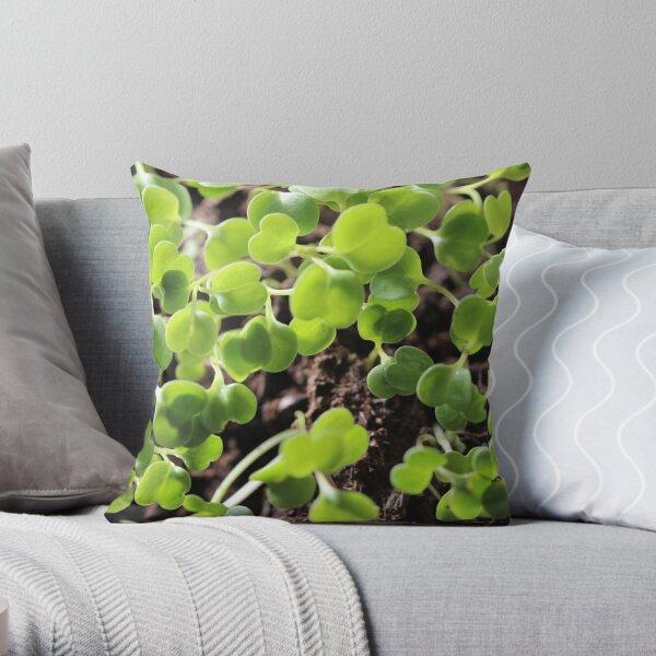 Microgreens seeds botanical Throw Pillow