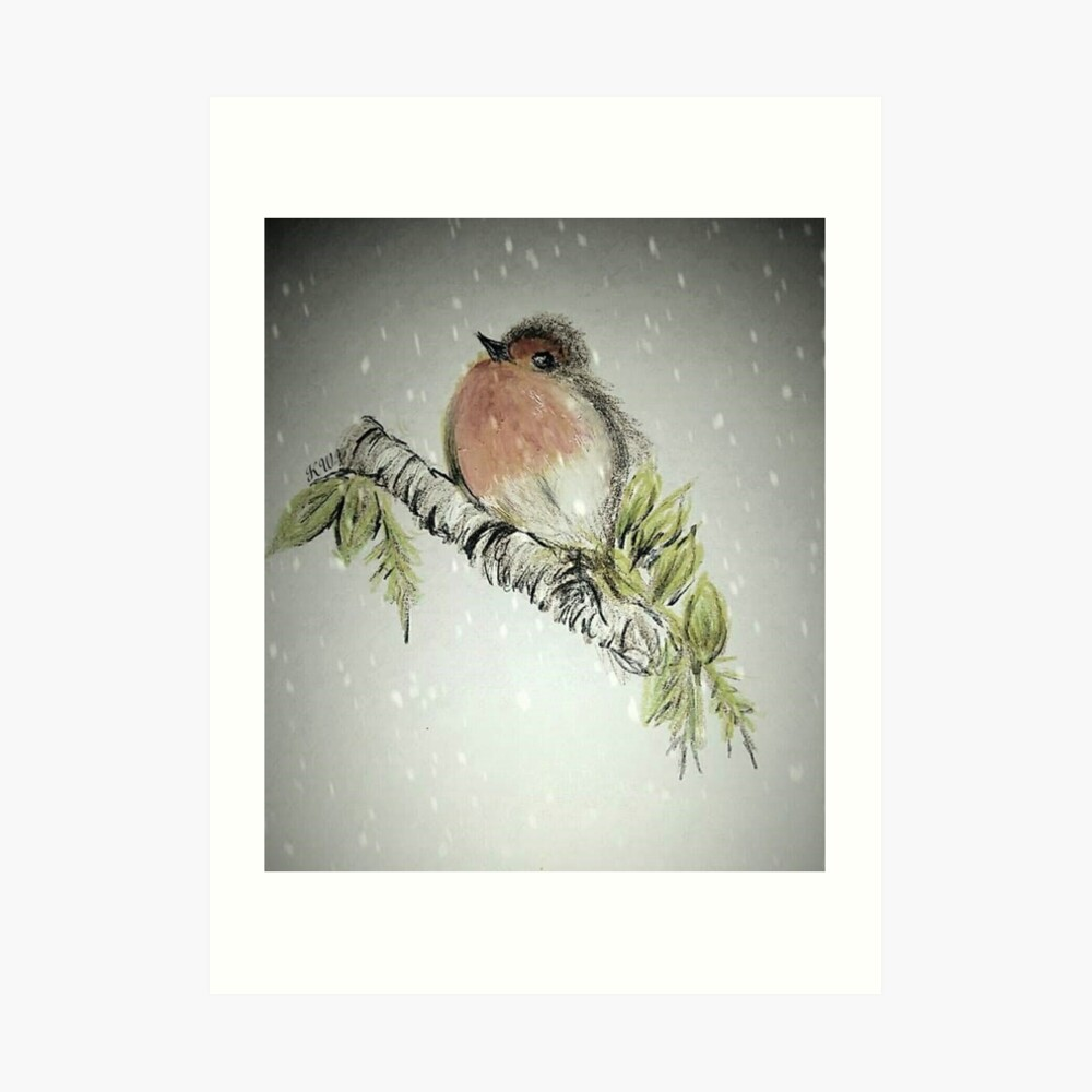 Robin Kunstdruck