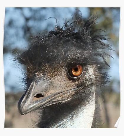 """""""Look what the emu oil did to my hair!"""" Poster"""