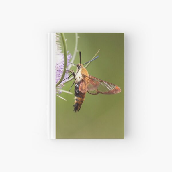 The Hummer Hardcover Journal