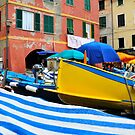Fishing Boats-Cinque Terre, Italy by Larry Glick