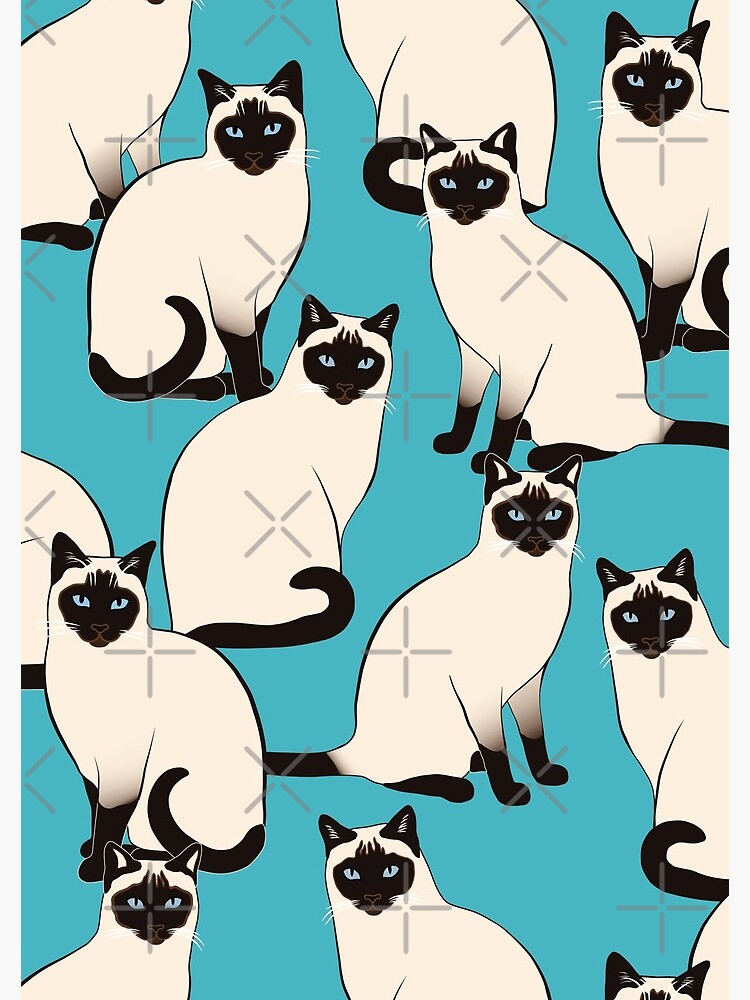 Siamese Cats dense on turquoise by nadyanadya