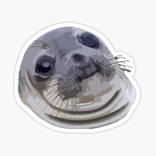 Awkward Seal Sticker