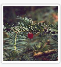 Winter Berry Sticker