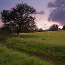 Springtime Sunset at Durleigh Brook by kernuak