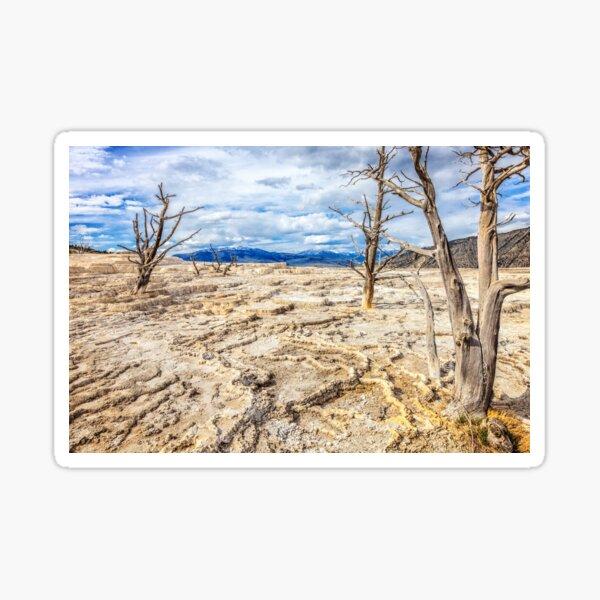 Mammoth Dry Spring Sticker