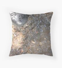 Evicted! Throw Pillow