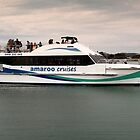 Amaroo Cruises Forster 22229 by kevin Chippindall