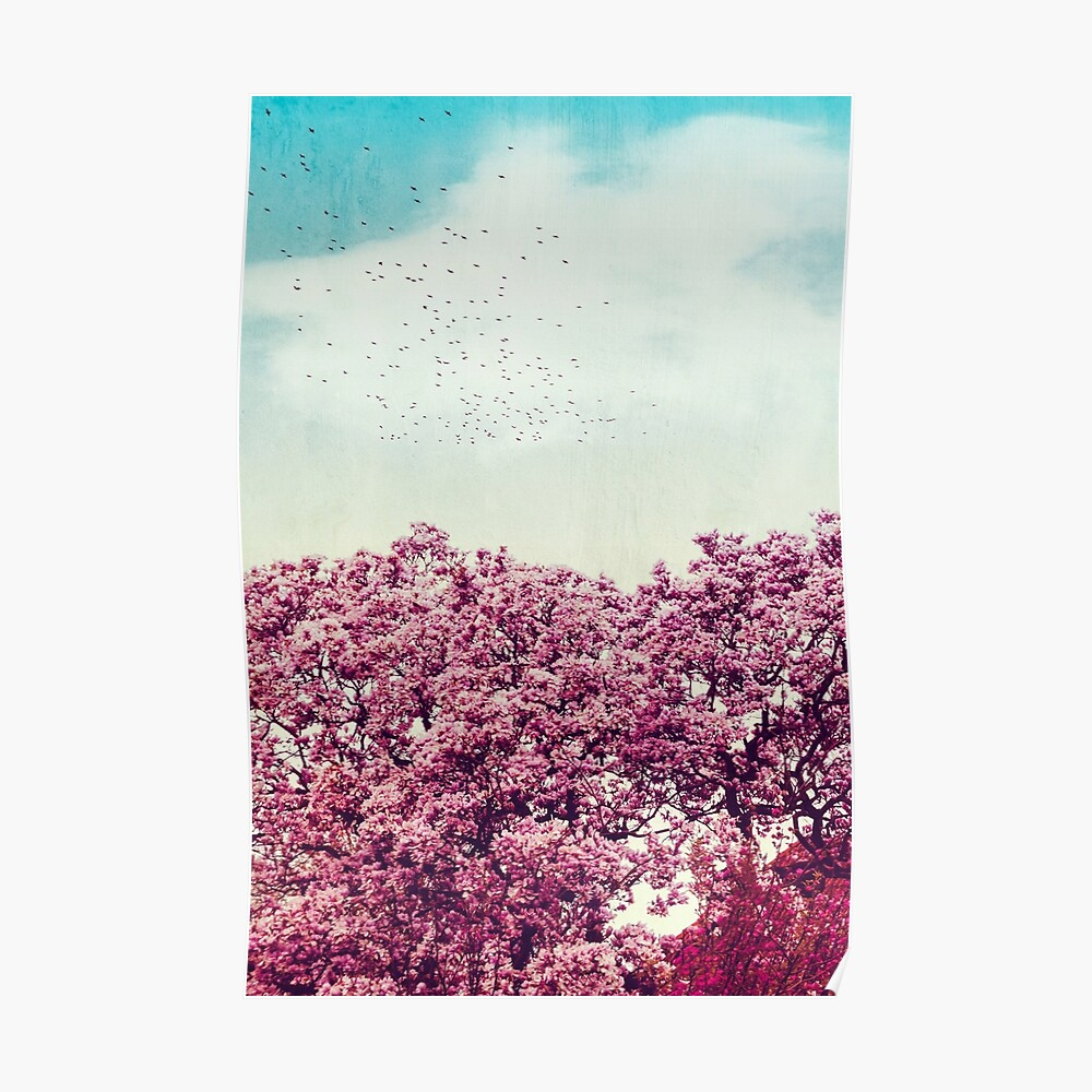 cOloUrs of spRing- Magnolia in bloom Poster