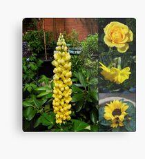 Frühlings- und Sommerblumen-Collage Metallbild