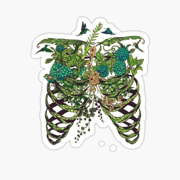 Nature Rib Cage Sticker