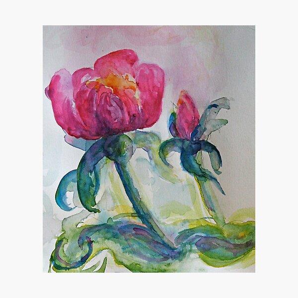 Pinky Purple Rose watercolour by CheyAnne Sexton Photographic Print
