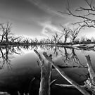 The End by Dave  Hartley