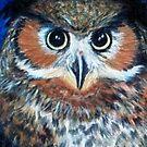 Baleful Eyes by Jedro