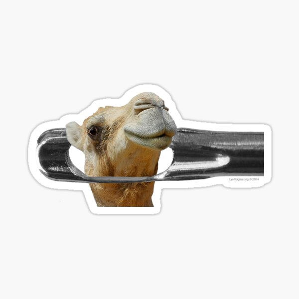 Camel Going Through the Eye of a Needle Sticker