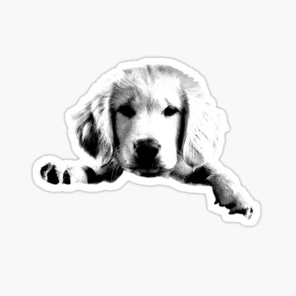 Golden Retriever Puppy Dog Engraving Sticker