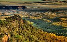 I Love Her Far Horizons (25 Shot HDR Pano)- Shippley Plateau, Blue Mountains  by Philip Johnson