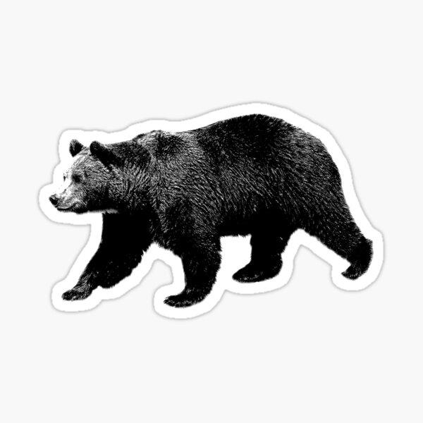 Bear Walking in the Woods. Digital Engraving Sticker