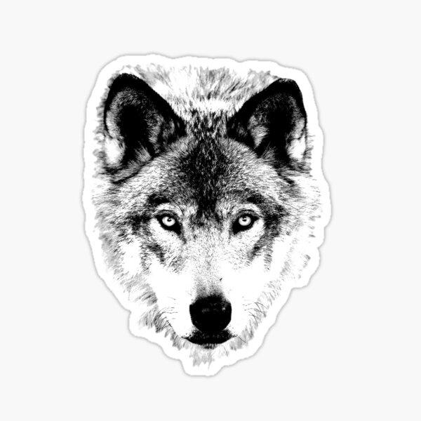 Wolf Face. Digital Wildlife Image. Sticker