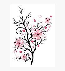 Kirschbaum Kirschblüten mit Herzen Sakura Frühling Fotodruck
