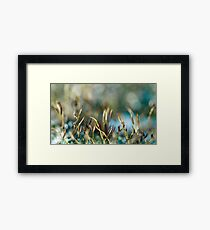 Moss abstract Framed Print
