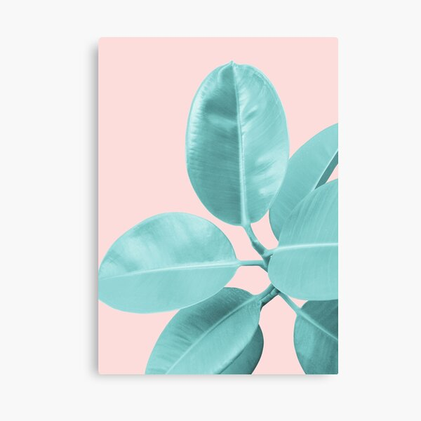 Ficus Elastica Pastel Blush Glam #1 #tropical #foliage #decor #art  Canvas Print