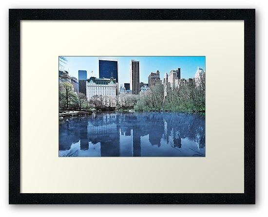 Central Park1 by Svetlana Sewell