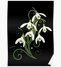 Schneeglöckchen Frühling Blumen Spring Flowers Poster