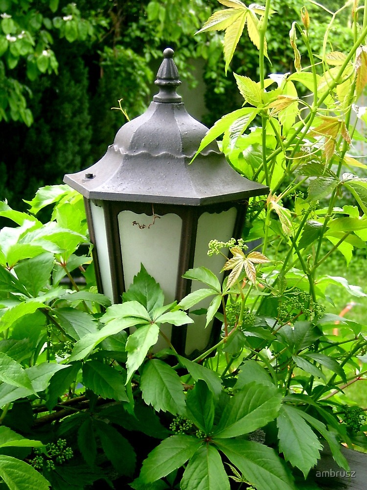 Garden lamp by ambrusz