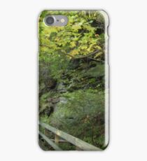 Along a trail at Mill Creek Park iPhone Case/Skin