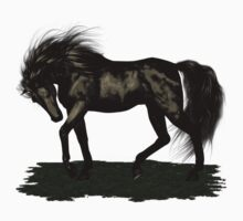 Ebony .. black stallion
