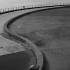 Curve-S by EarlCVans