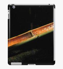 Nigatsudo iPad Case/Skin