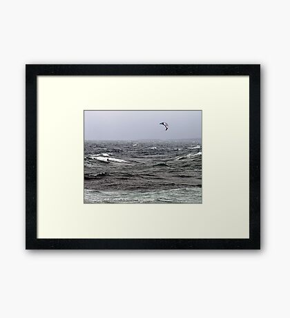 Blown By The Wind Framed Print