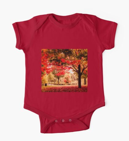 Red Maple in Larz Anderson park. Kids Clothes