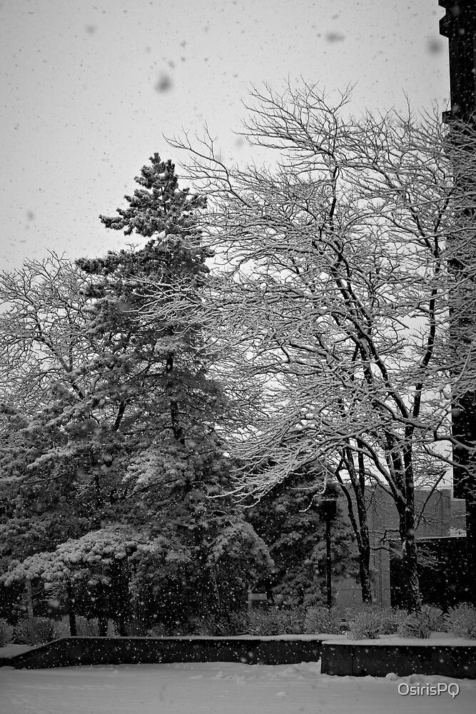 Urban Winter (2) by OsirisPQ
